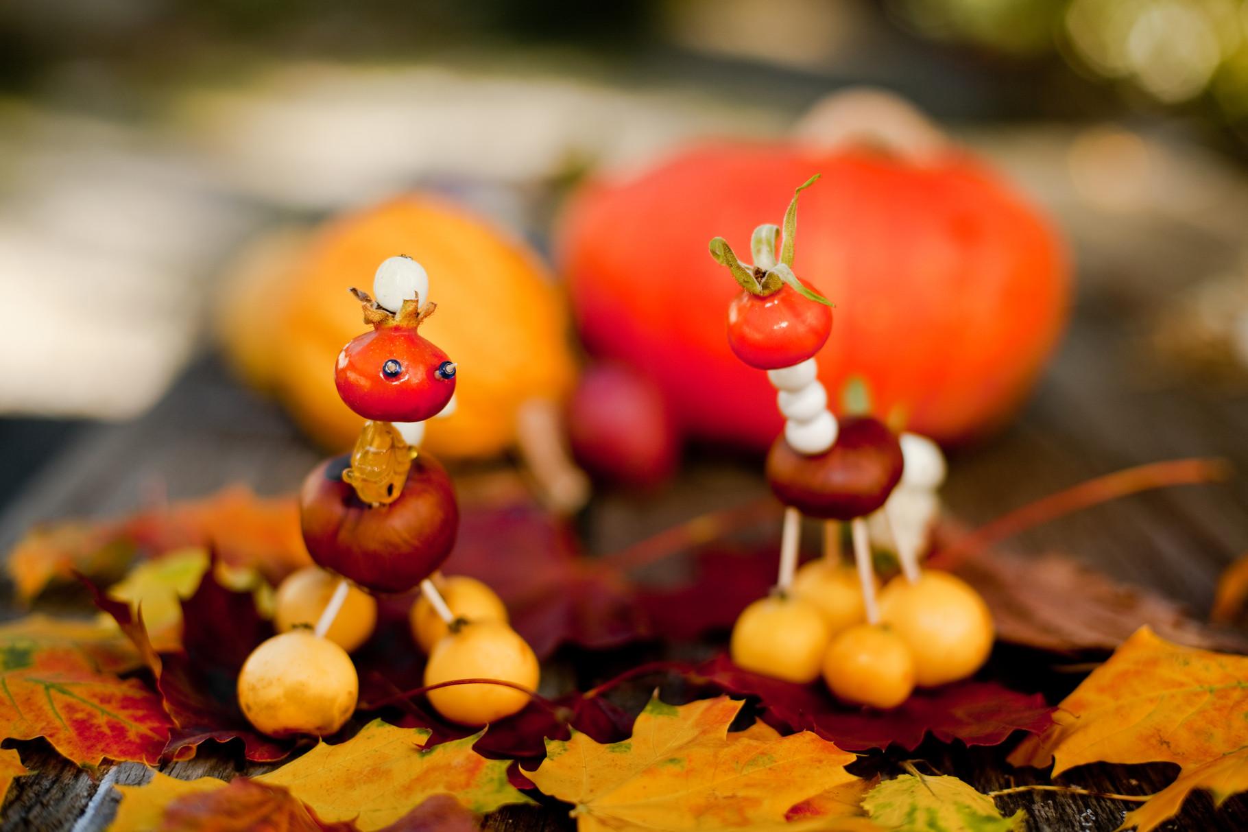 Herbst-Knallerbsen © Knallerbsenhof