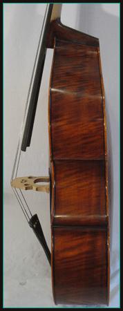 contrebasse-403063 profil