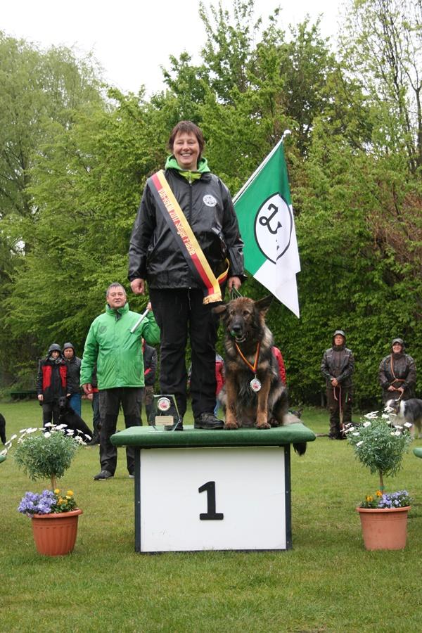 Deutscher Meister 2017 Fläche