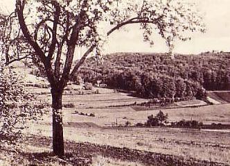 Blick von der Ruhlaer Straße - Archiv W.Malek