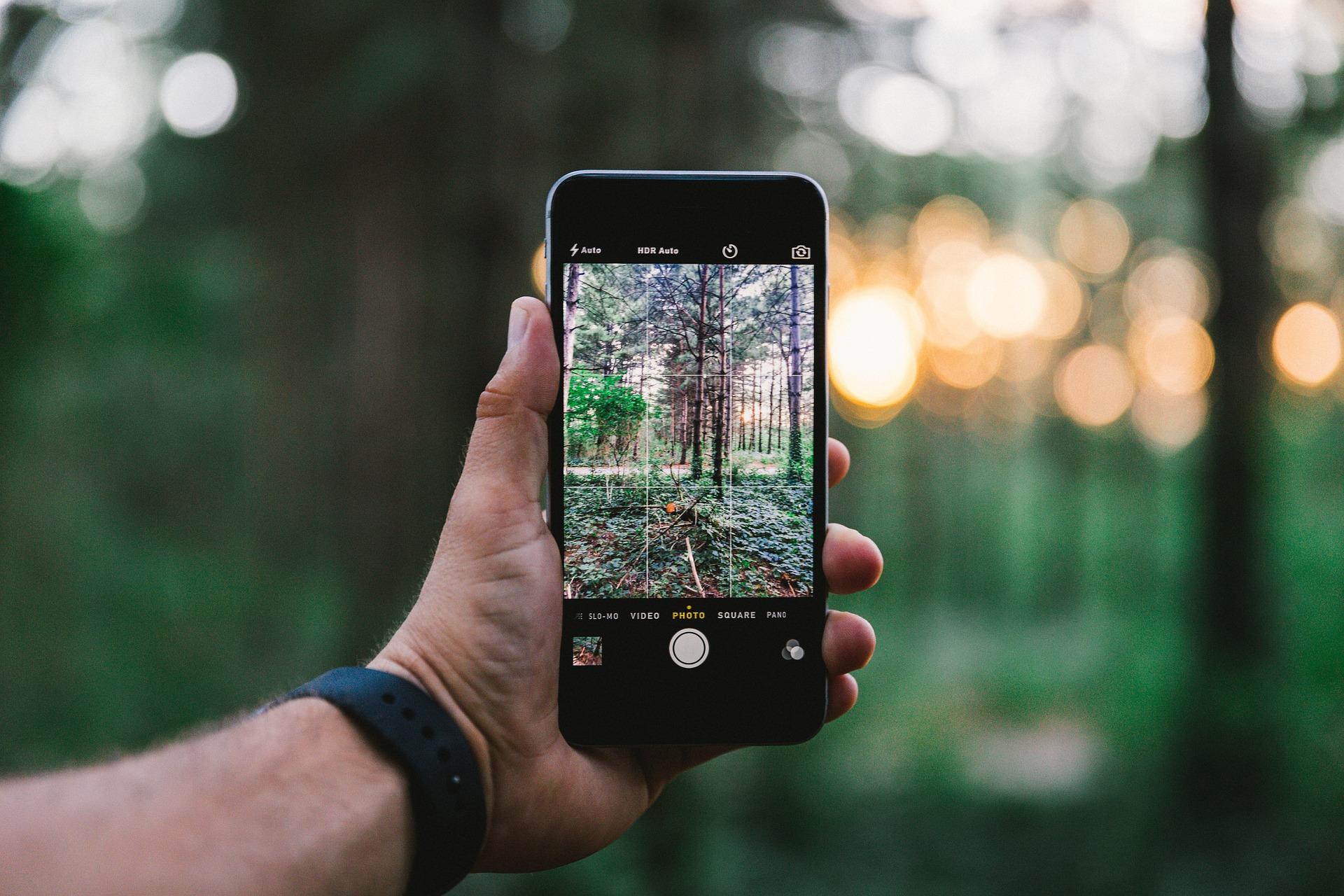 Nachhaltigkeit und Social Media
