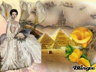 Sposa d'Egitto