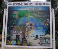 Schéma du système intégré de Songhaï