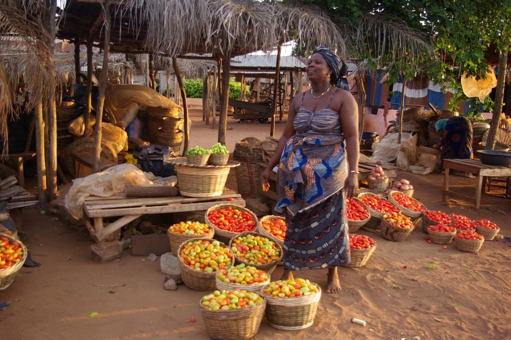 Un marché aux tomates vers Godonoutin