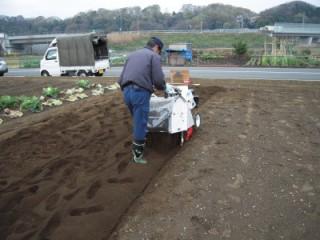 畑の石除去