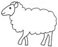 Peaux de cuir de mouton