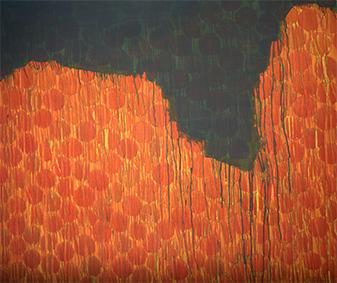 Sonne bescheint den Fels   130x155   2009