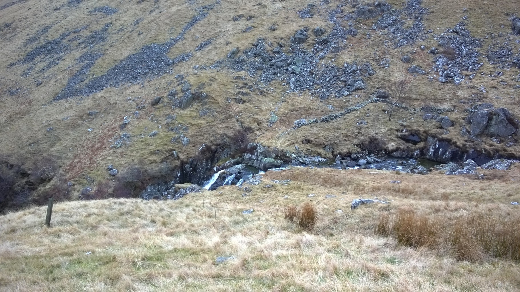 Streams from the Ettrick Forest running into Reservior