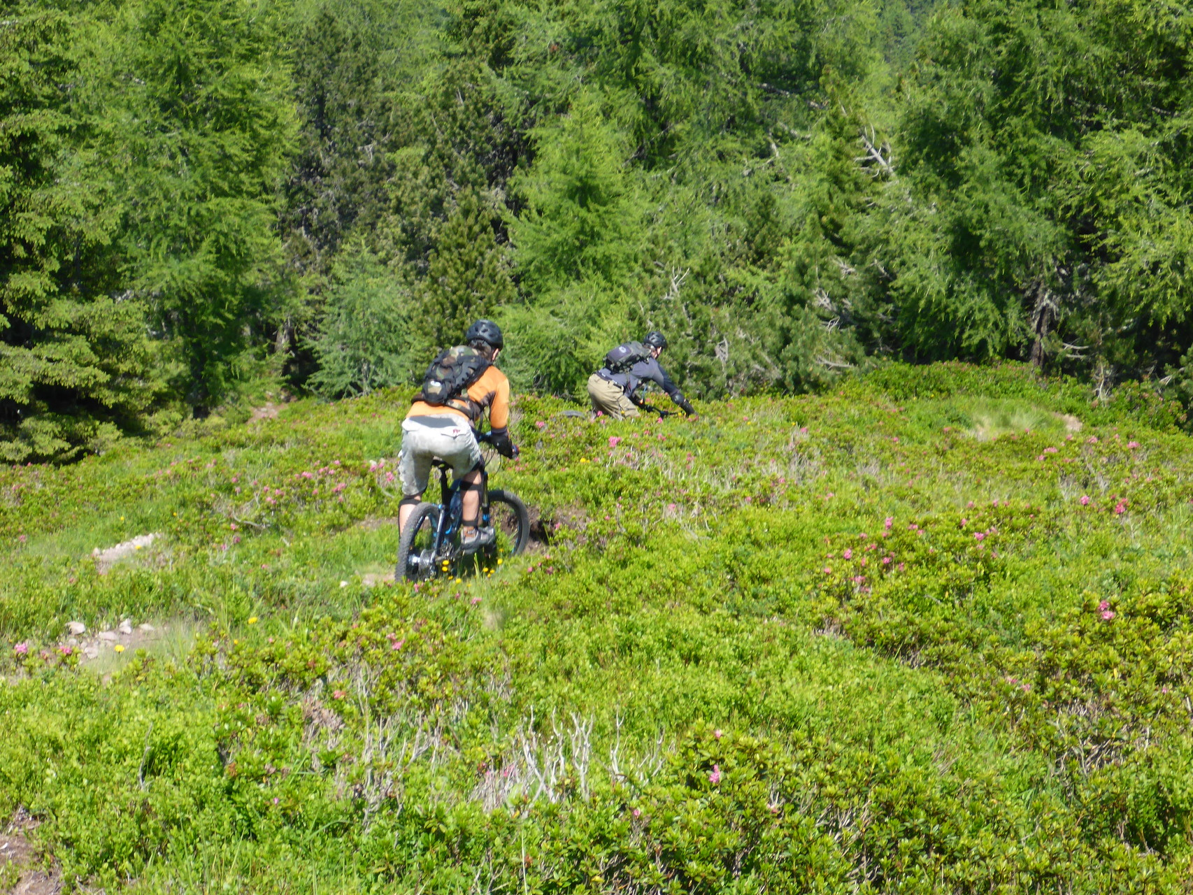 Trails die nur Bike Wanderer erreichen