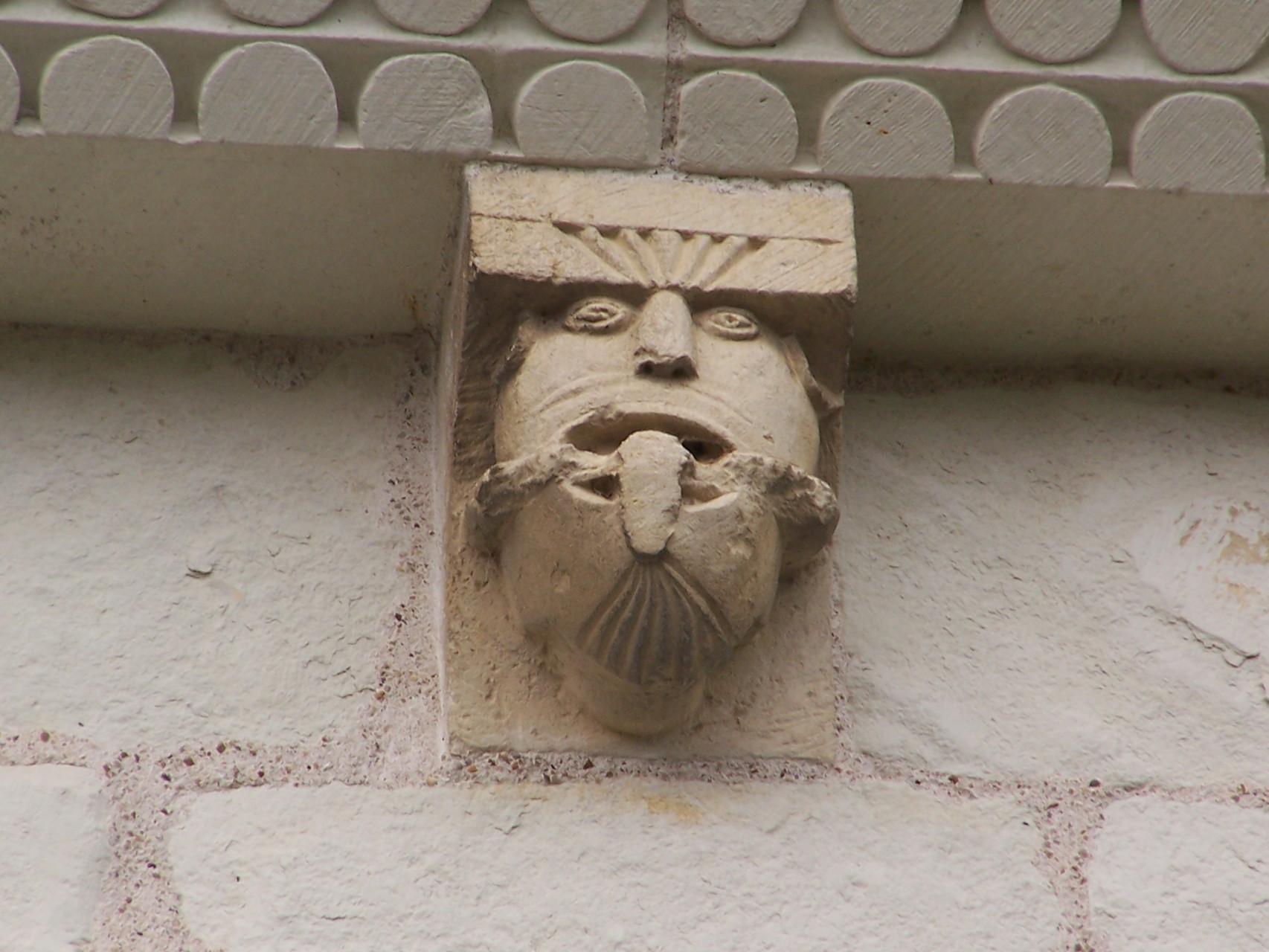 Corbeau sud - vieillard barbu tirant la langue