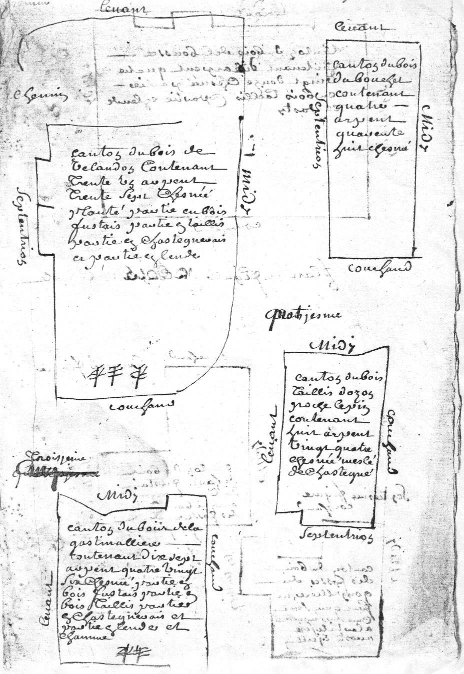 1729 - Plans des bois de la commanderie d'Auzon  - D'Allogny de la Groie Figures 1,2,3 et 4