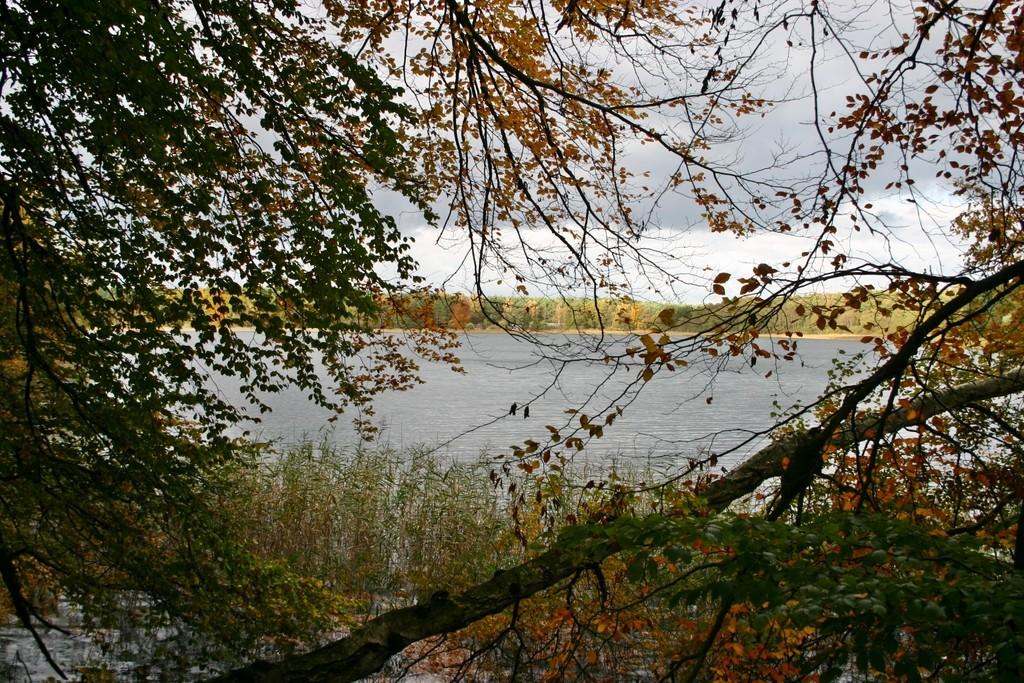 Templin, Blick auf den Lübbesee (Foto: Günter Maaß)