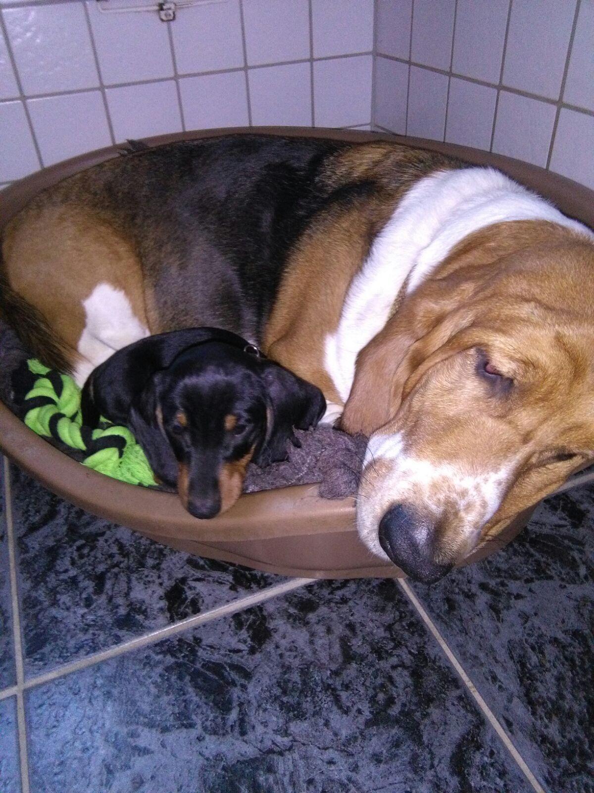 Claas-Momme mit seiner Freundin Moni