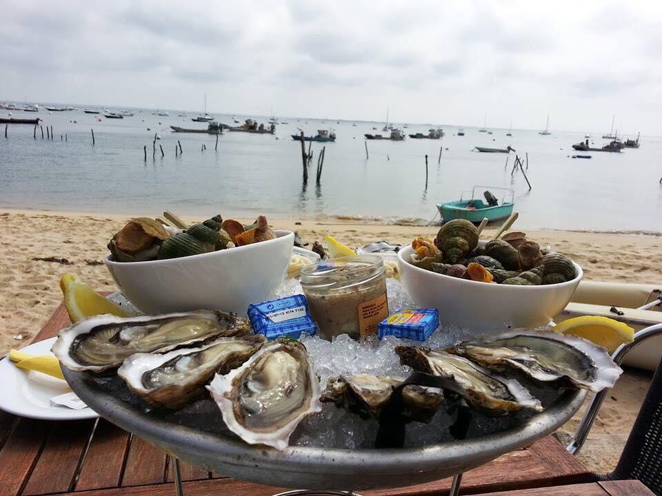 Устричный тур в Аркашон и Русский гид в Бордо #GourmetFeastVoyage www.ru-france.com