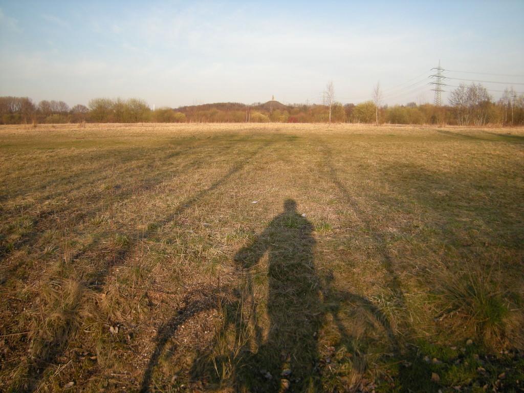 Blick zur Halde Rheinelbe auf dem Weg zum Mechtenberg