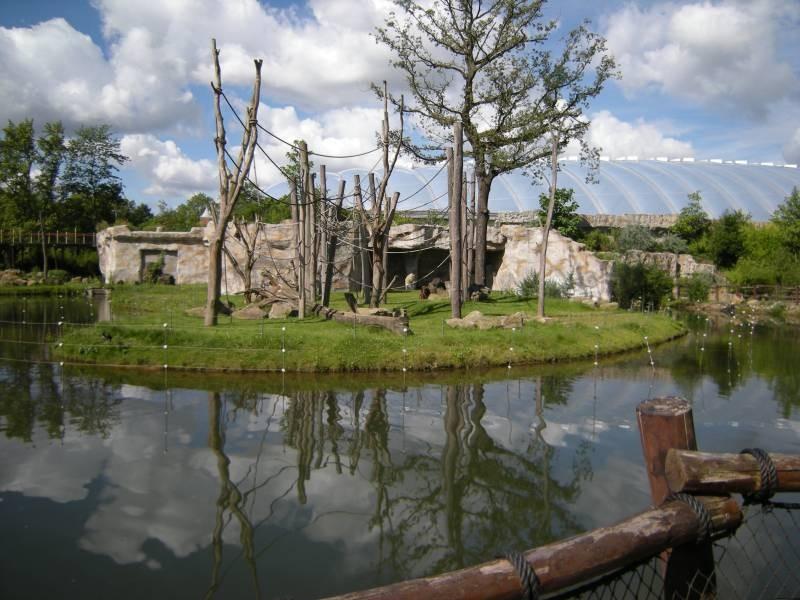 Blick auf die Affeninsel