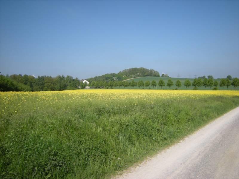 eine freundliche Landschaft im Süden Gelsenkirchens