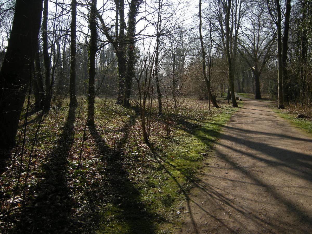 Rheinelbe-Park