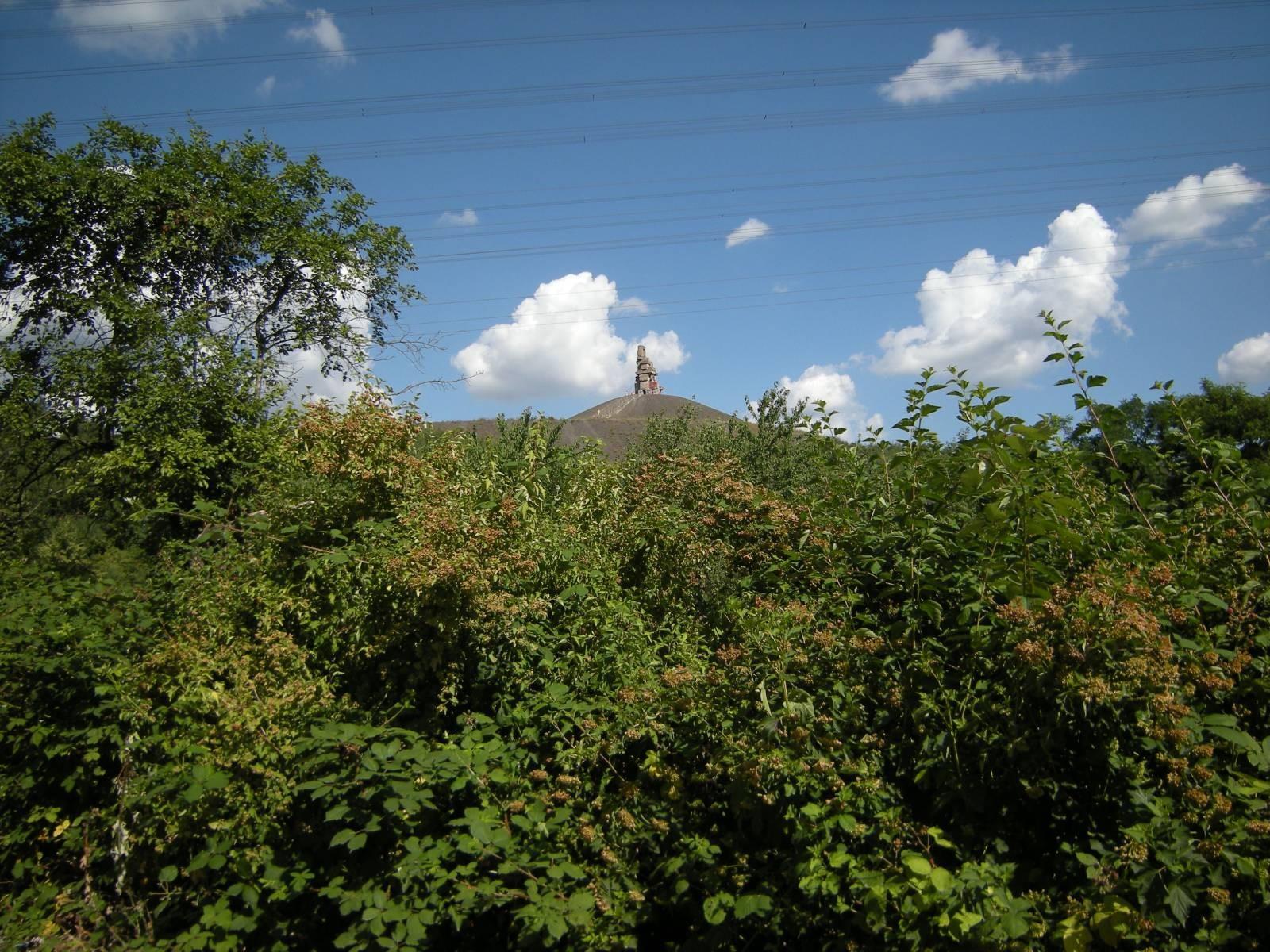 Halde RheinElbe, Himmelsleiter