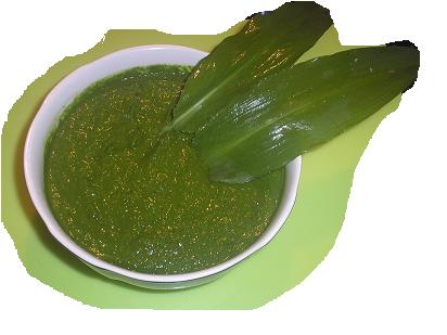 Grünes Bärlauchpesto