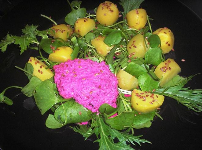 Frischer Postelein-Salat mit Leinsamenkartoffeln und Dressing aus roter Beete und Äpfeln
