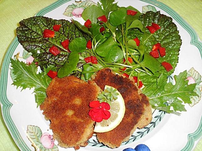 Austernseitlinge-Schnitzel mit frischem Salat und Paprikawürfel