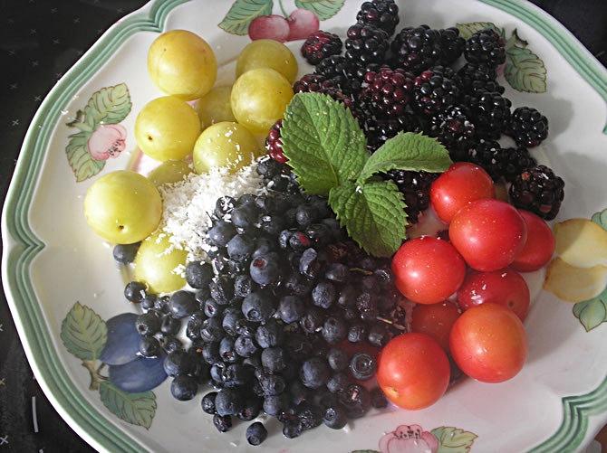 Frische Früchtchen Mirabelln, Brombeeren, Heidelbeeren und Kokosflocken