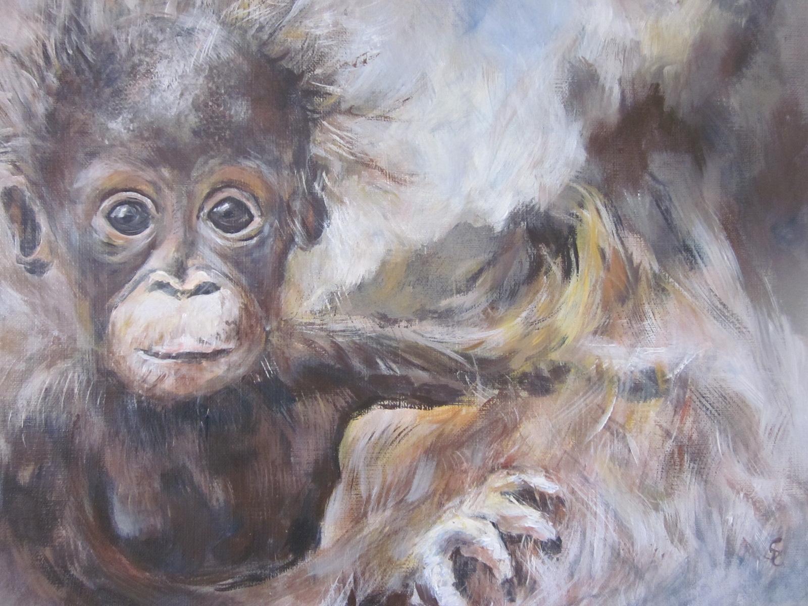 Nr. 31  Affenbaby    30 x 20cm