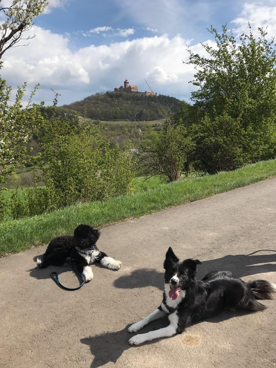 Auf Burgen-Wanderung Galina mit einem Kumpel