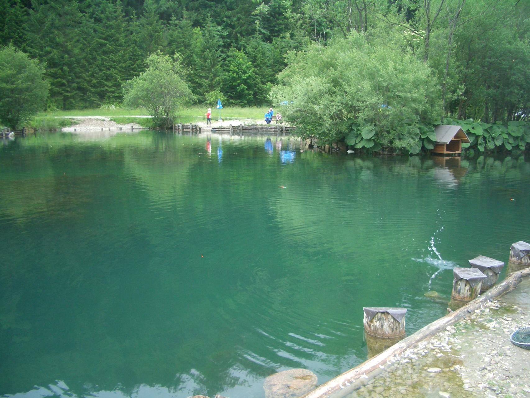Fischen in Feistenau.