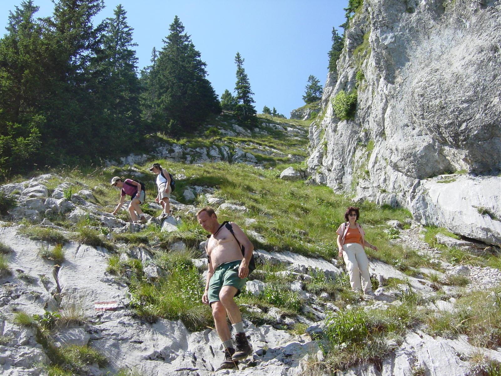 Abstieg vom Traunstein.