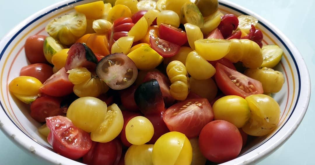 unsere Tomatenvielfalt
