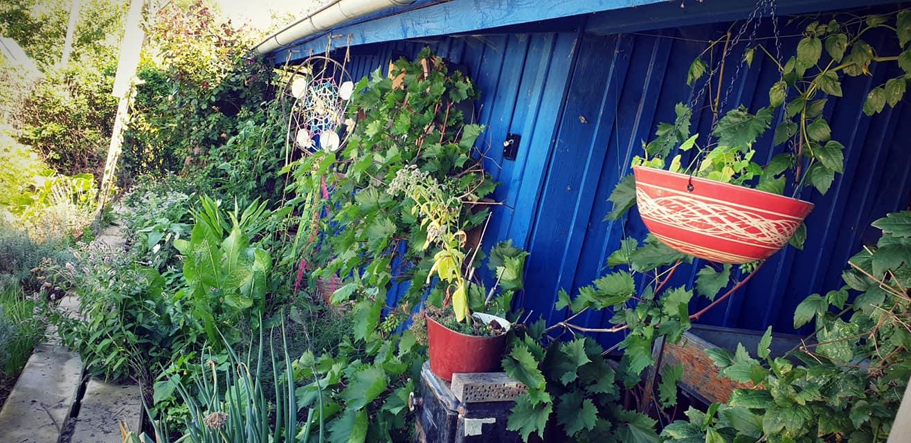 beim Gartenhaus