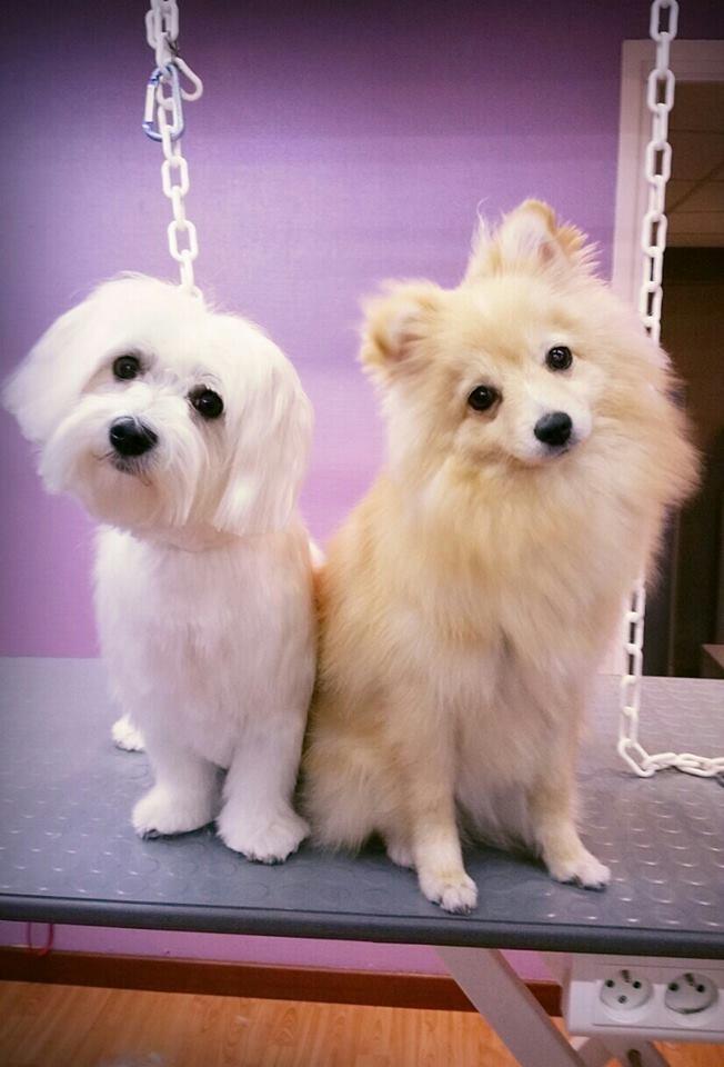 JANA & LILI