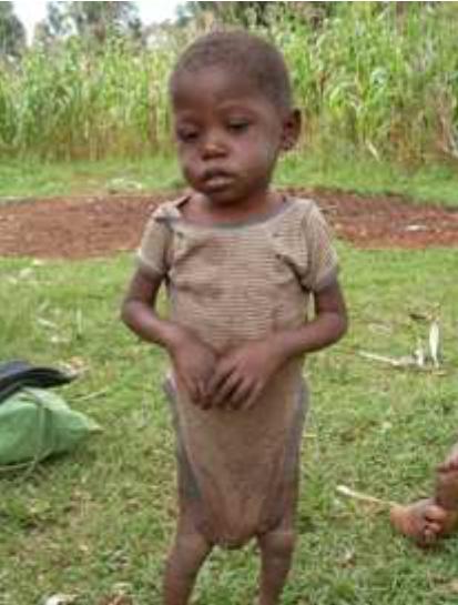 Juli 2009 Verdreckt und unterernährt
