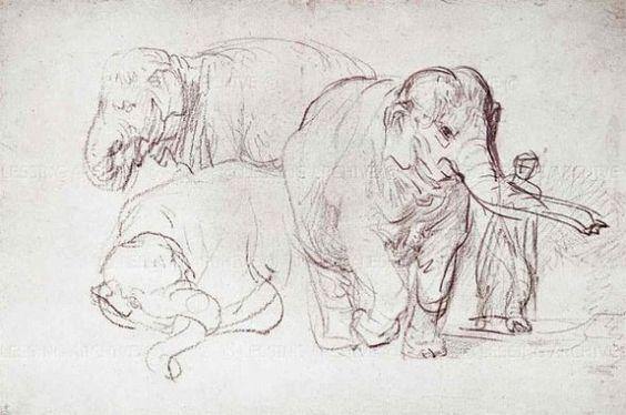 Rembrandt van Rijn: elephant