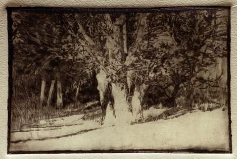 Andreas Vanpoucke: The oak trees