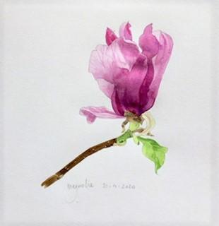 Annette Fienieg: Magnolia 10-4-2020