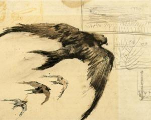 Vincent van Gogh: gierzwaluwen en landschapsschets