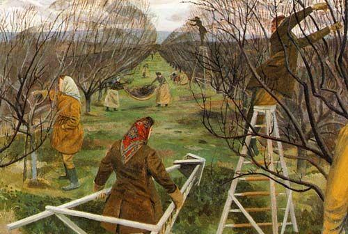 Evelyn Dunbar: Landgirls pruning