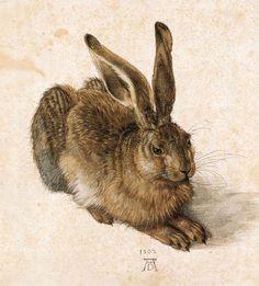 Albrecht Dürer: hare