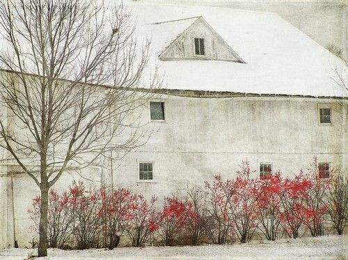 Andrew Wyeth: First snow