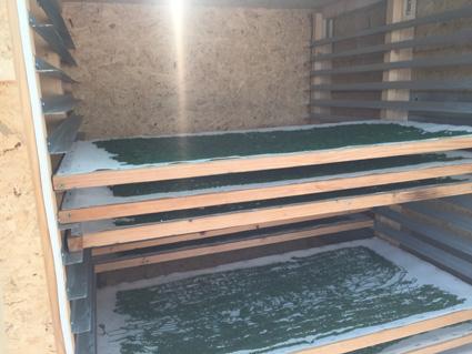 Photographie de l'intérieur du séchoir avec des clayettes