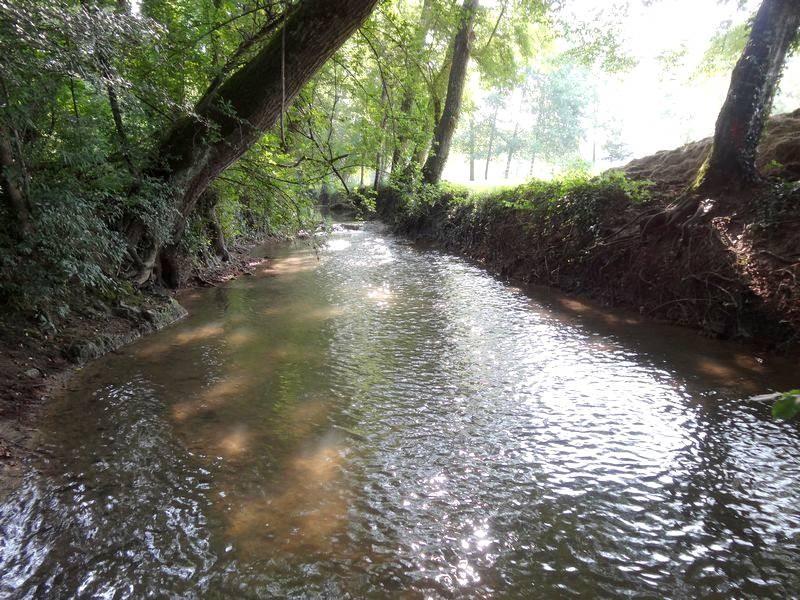 La rivière Conne au pont de Bazet