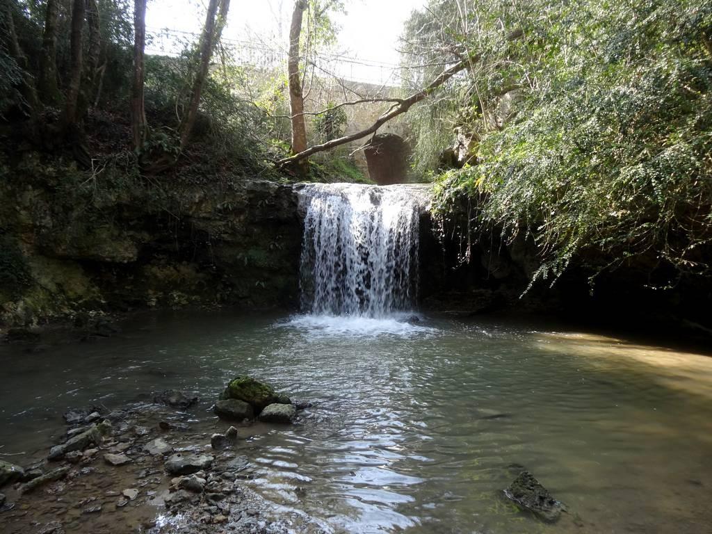 Chute d'eau naturelle sur le Grimoudou