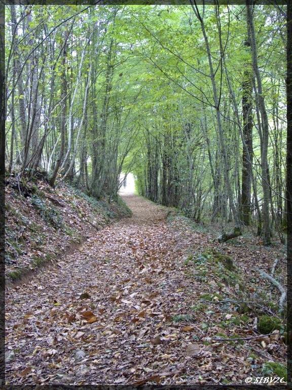 Chemin de randonnée en vallée de la Couze - GR6 à Saint Avit Senieur