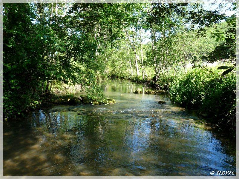 La Couze en aval du Pont de Bayac - à 25 km de sa source - largeur 8 m