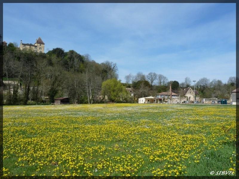 Une photo prise ce printemps à Couze et Saint Front.  Vue sur le moulin de la Rouzique en fond et sur le Mont d'Onel (sommet de la coline)