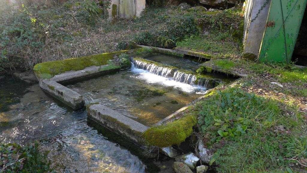 Source de Cantelouve
