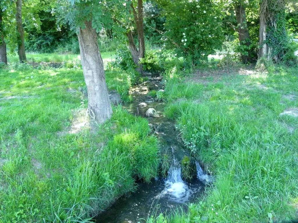 La Fontoursine, affluent de la Conne
